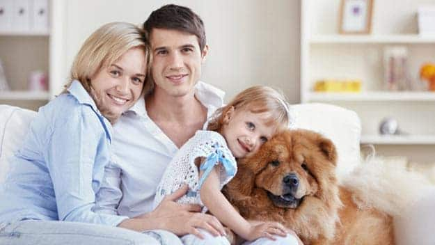 Wills & Trusts dog-young-family Direct Wills Oxford